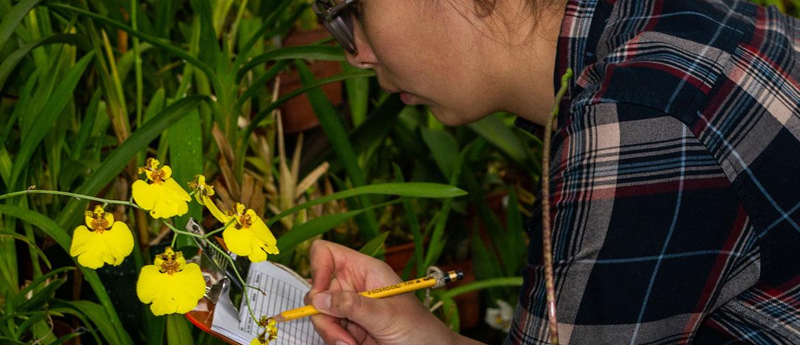 Inventario de la biodiversidad en el JBQ