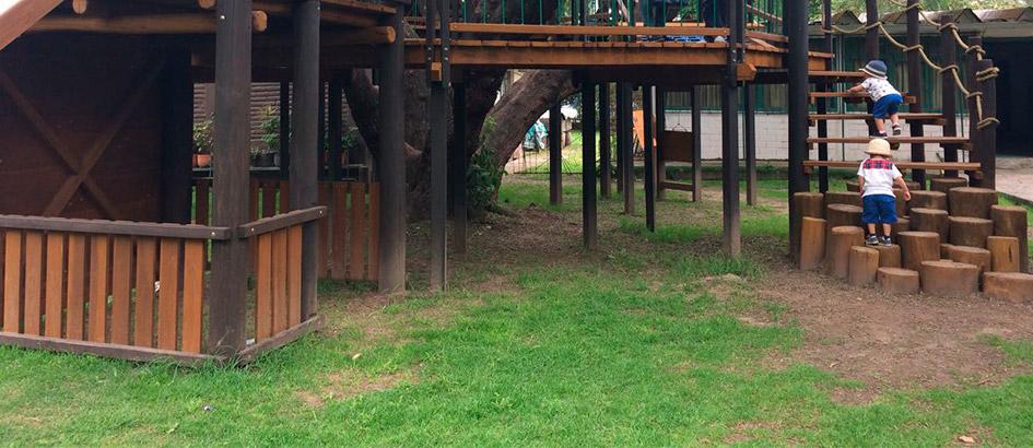 Jardín del Árbol Urbano