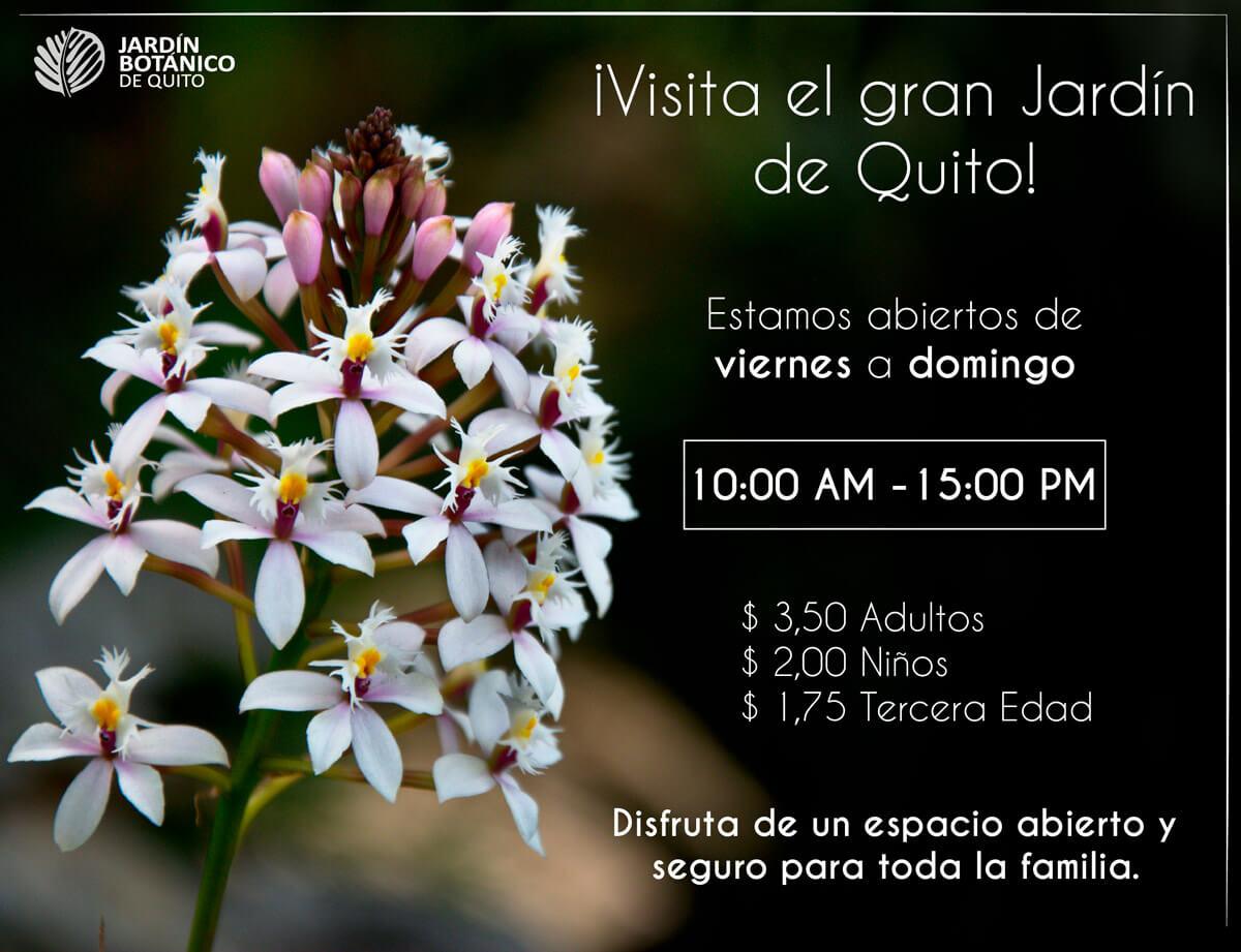 Visita el gran Jardín botánico